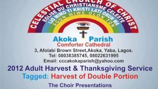 celestial church of christ comforter cathedral akoka parish 1 choir 2012 adult harvest