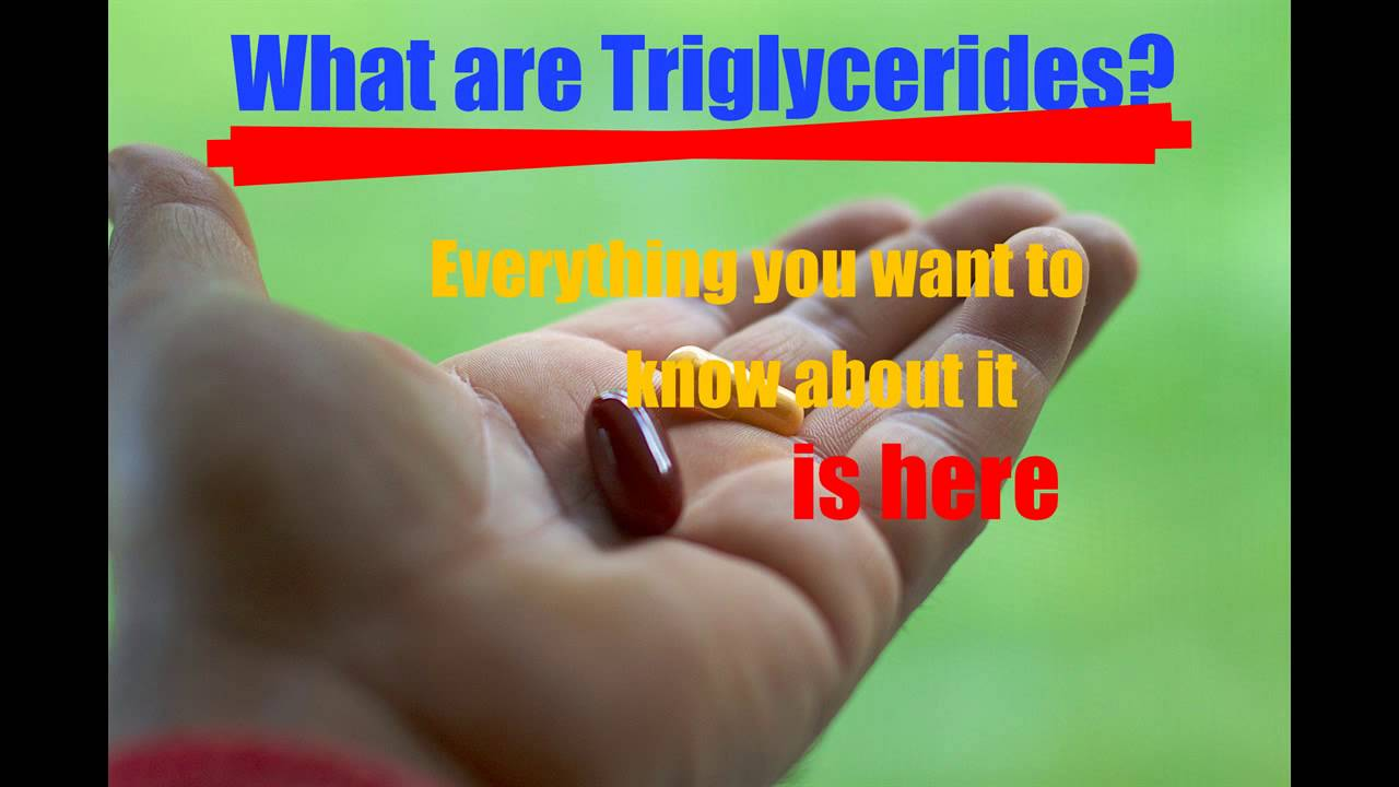 what are triglycerides - 1280×720
