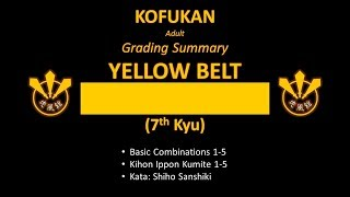 Grading Summary: Yellow Belt (Adult)