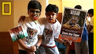 To Save Tigers, India Turns to Kids