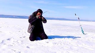 Зимняя рыбалка на море Нашли кучу рыбы на бескрайних просторах