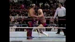 Legion of Doom vs jobbers WWF PTW 1990.mpg
