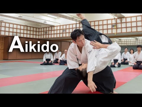 Dynamic Aikido in Taiwan - Throwing to each other SHIRAKAWA RYUJI shihan