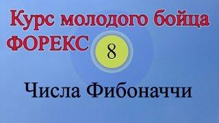 Числа Фибоначчи (Обучение Форекс Урок 8)
