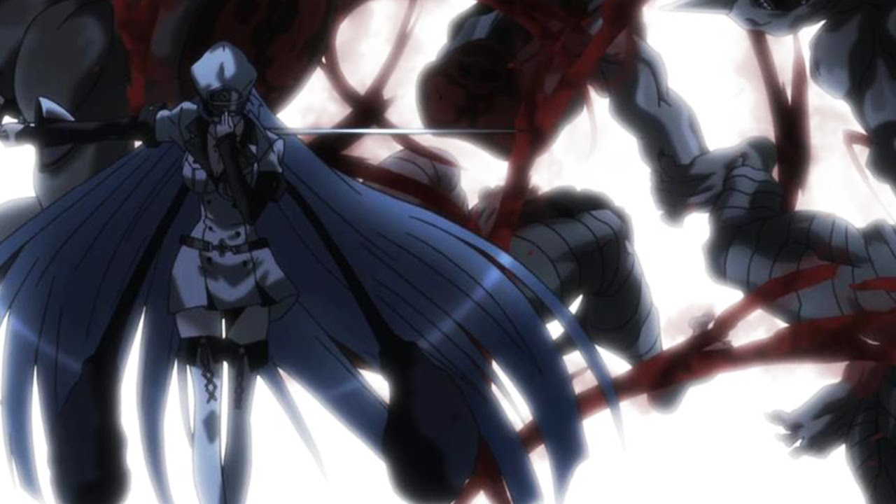 Akame ga kill 1 - 2 4