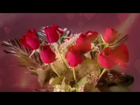 🌷 Waltz of Roses, Waltz of Love 🌷