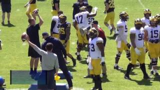 Ncaa, Michigan Wolverines (1): practice in Rome - Wolverines a Roma