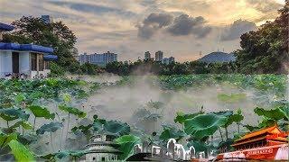 《地理中国》 20190907 湖中奇坑| CCTV科教