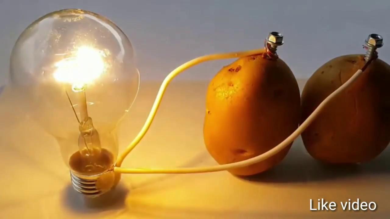 Potato Light Bulb Not Working | Decoratingspecial.com
