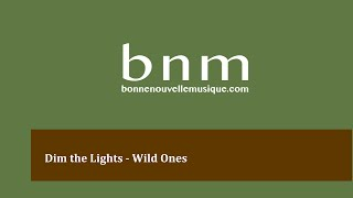 Dim the Lights - Wild Ones