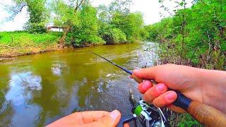 БЕШЕНЫЕ ПОКЛЁВКИ в КАМНЯХ на воблер Ловля голавля на малой реке Рыбалка на спиннинг