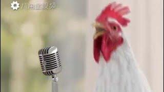 Курица поёт- Деспасито-  Despacito