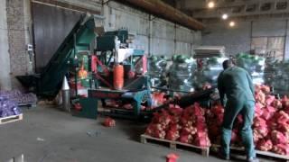 видео Упаковочные машины для овощей