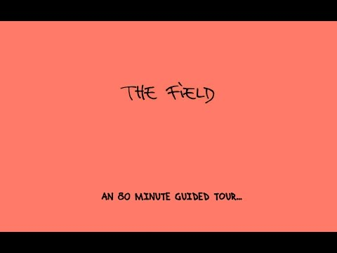 "The Field 2007-2013 Mix ""An 80 Minute Guided Tour"""