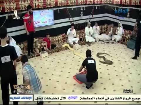 #المدهال | تدشين فرقة أبو سرهد في المدهال