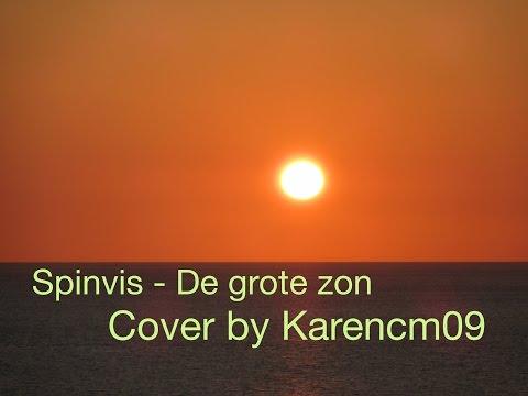 Spinvis - De grote zon (cover) mp3