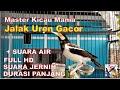 Jalak Suren Gacor Full Isian Panjang Jernih Suara Air Mengalir Lengkap(.mp3 .mp4) Mp3 - Mp4 Download