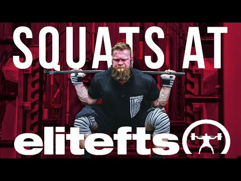 Squatting At Elitefts