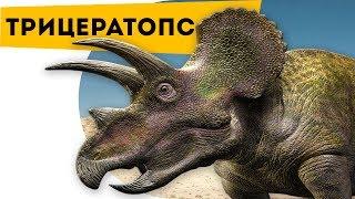 Интересно про динозавров | Трицератопс | Познавательный канал | Динозавры для детей