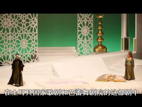 Saray'dan Kız Kaçırma Çin'de 后宫诱逃