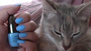 Smalto del giorno con gatto: Pupa lasting color GEL n. 55 (feat. MissPenny09)