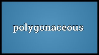 Polygonaceous Meaning