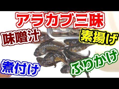 モンスター級のアラカブを使ってアラカブ三昧の料理に!!