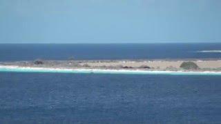 ベネズエラ沖合にあるオランダ領の島、ボネール島に大型客船到着