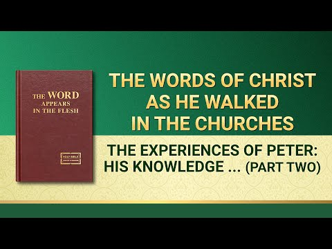 """The Word of God   """"The Experiences of Peter: His Knowledge of Chastisement and Judgment"""" (Part Two)"""
