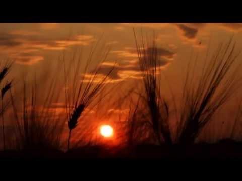 Fields of gold (Sting) - Duo Balance