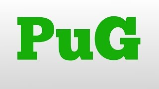 Pug Meaning And Pronunciation