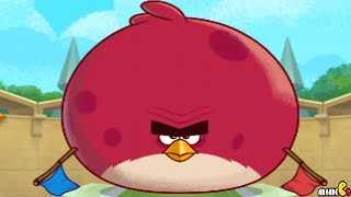 Angry Birds Fight! - Arena Chuck Master Cup Part 76! iOS/iPad