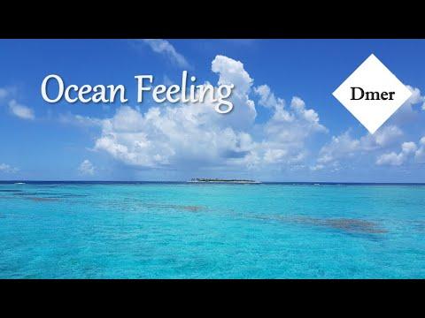 Dmer Piano - 海洋心情 (Ocean Feeling)