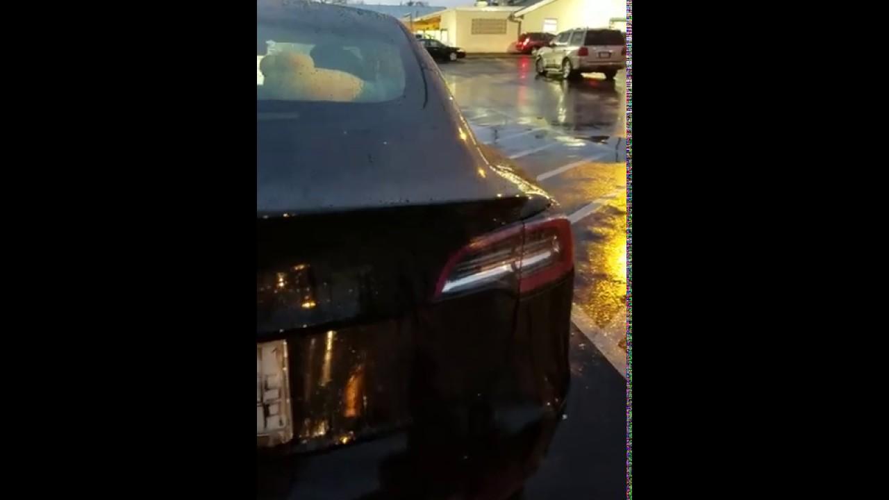 December 31, 2018: Tesla Model 3 rain water leaking in trunk