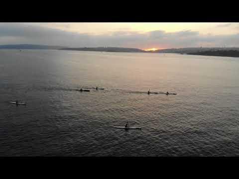 Sydney Harbour Surf Club