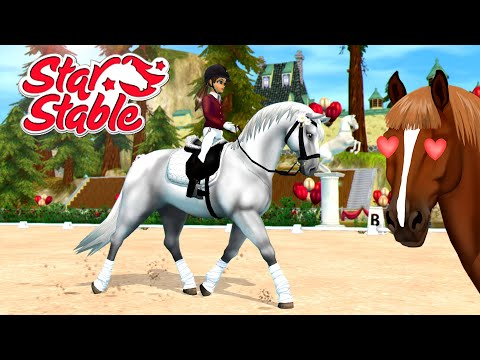 Star Stable Jorvik Stables Open House Event  New Horses & Arena!