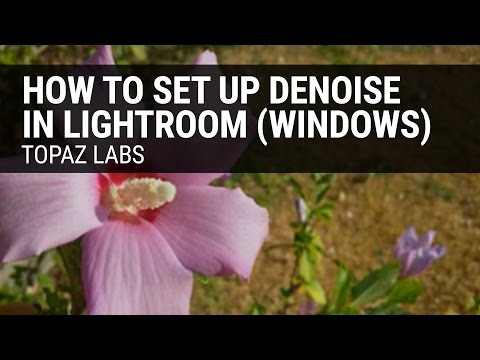 How to set up Topaz DeNoise in Lightroom (Windows)