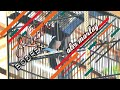 Kacerbodrex Alexmarlay Marlayteam Kacer Bodrex Alex Marlay Lagi Enak Di Akrilik  Mp3 - Mp4 Download