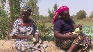 Burkina : Ces femmes qui nourrissent Ouagadougou