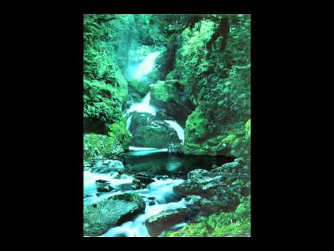 "ARCHANGEL MICHAEL ""11 MINUTES OF LOVE ENERGY"" (Live Meditation)"