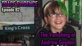 The Vanishing of Andrew Gosden - Trace Evidence