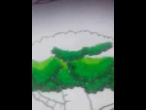 Menggambar Daun hijau, Mewarnai Daun hijau
