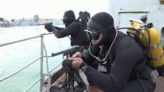 Российские военные провели масштабные учения вместе с сирийской армией в порту Тартус.