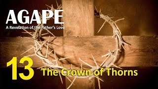 A13 The Crown of Thorns