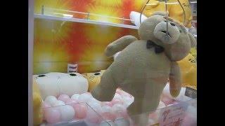 奇跡の一発ゲット!?【UFOキャッチャー】 テッド ted2 ぬいぐるみXL プレミアム Part2