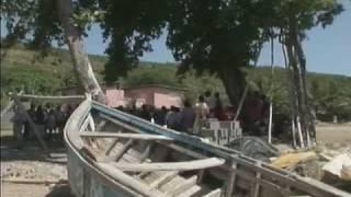 Haiti: mangrove protection
