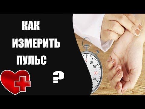 Как измерить пульс, техника измерения пульса