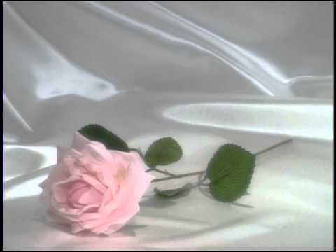 Скачать свадебные футажи