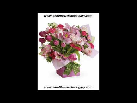 Send flowers from Slovenia to Calgary Alberta Canada