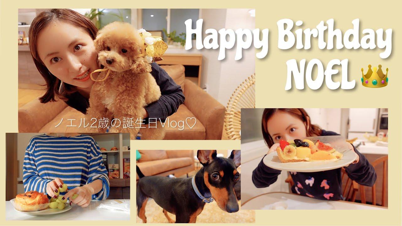 1日密着 : 愛犬のお誕生日をお祝いした日のVlog♡